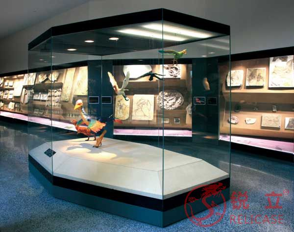 Shanghai Natural History Museum Free standing display cases 1